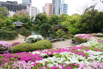 相楽園_つつじ遊山2